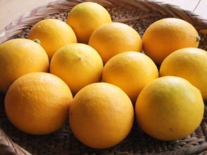 Lemon1_4