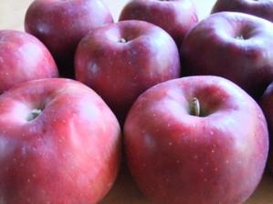 Applekogyoku