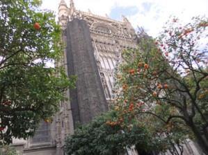 Sevilla12